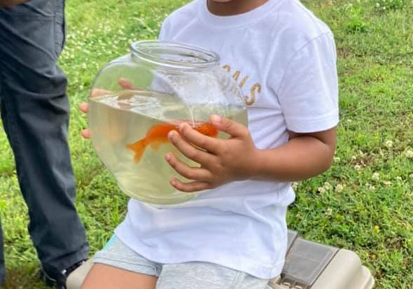 A local participant in the Annual Cops and Bobbers fishing event that took place on Saturday, June 5, was lucky enough to catch one of the gold fish that was stocked in the pond at the Henderson County Criminal Justice Complex. Photo Submitted / The Lexington Progress